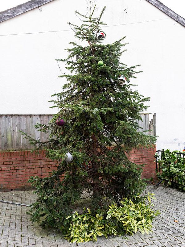英媒体罗列各地造型奇特遭众人调侃圣诞树