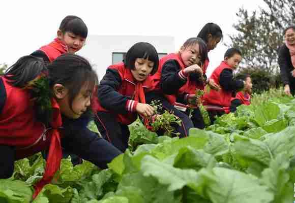重庆梁平区新金带小学的变迁