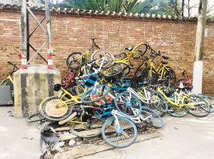 昆明:绿化带中堆垃圾共享单车乱丢弃