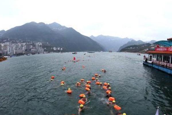 国内千余冬泳爱好者横渡长江三峡