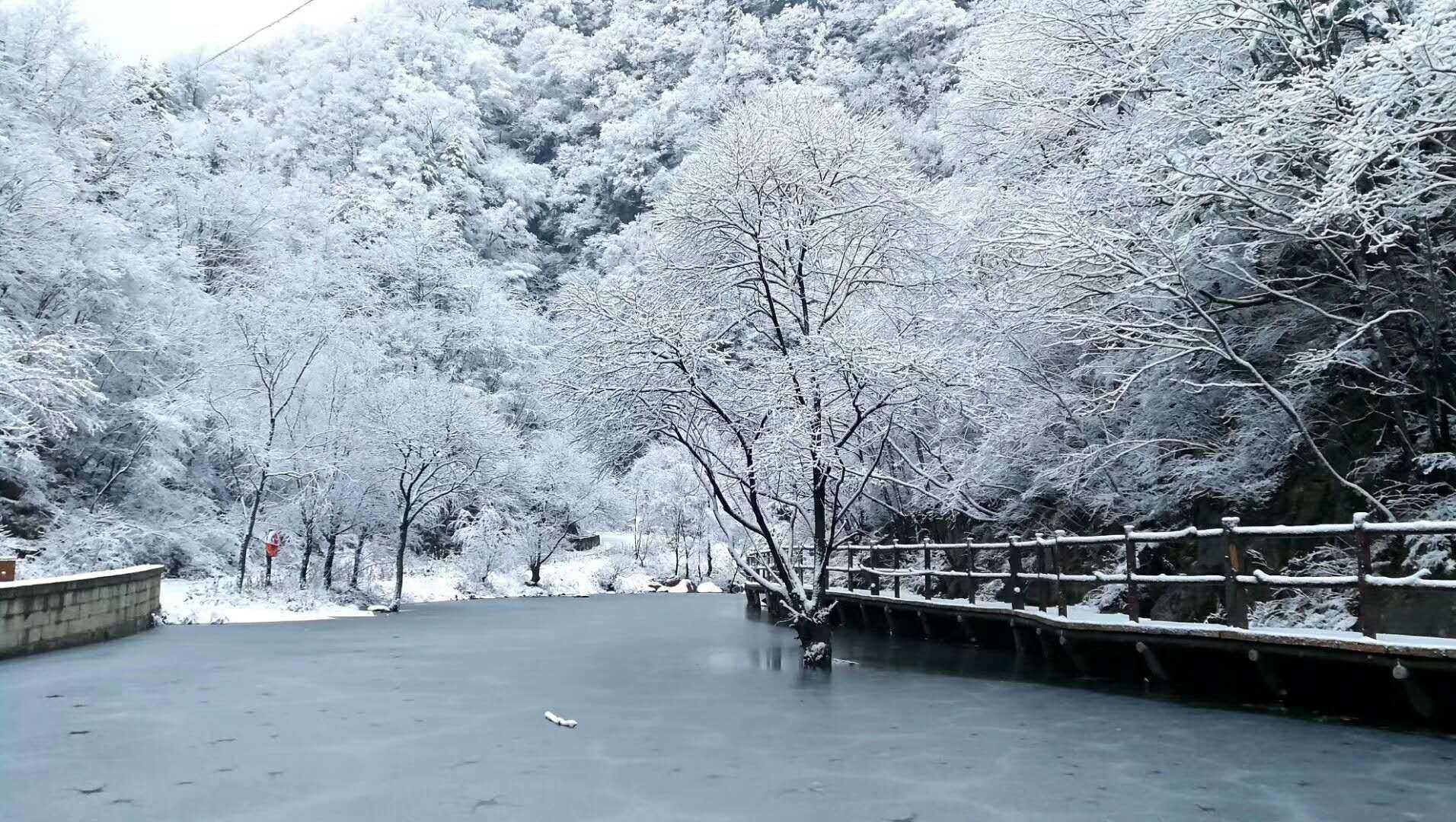 冷冷冷+雪雪雪,明日河南东部将有中到大雪