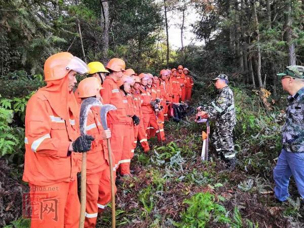 浔中镇开展森林消防队伍培训演练