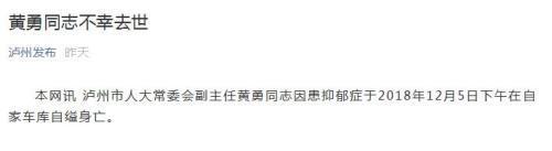 四川泸州人大常委会副主任黄勇因抑郁症自缢身亡