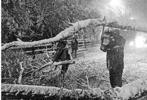 休息,不敢熟睡坐等电话干活,雪地里热出一身汗
