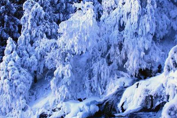 新疆天山天池步道现冰雪奇观