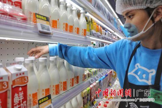 温氏供港澳标准优质鲜奶在广深盒马上架 1天1瓶不隔夜