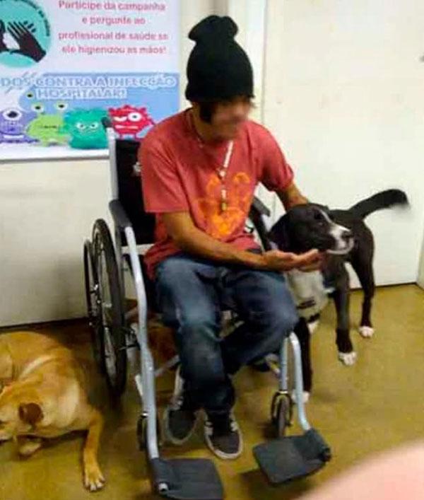 暖心!巴西4只宠物狗医院门口等主人看病出来