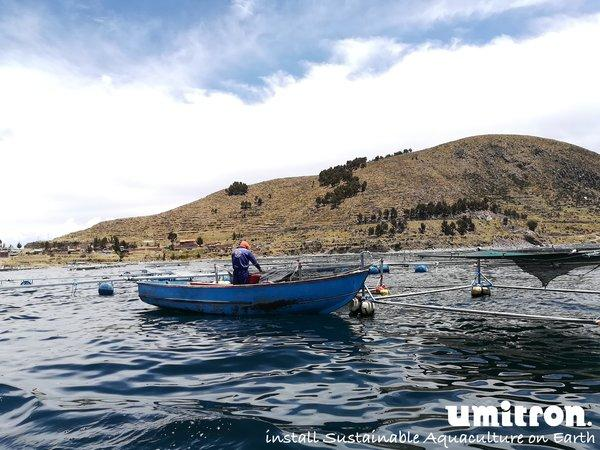 A Peruvian farmer checks his fish via boat, similar boat trips and manual feeding operations will be reduced when using Umitron's automated feeding technology.