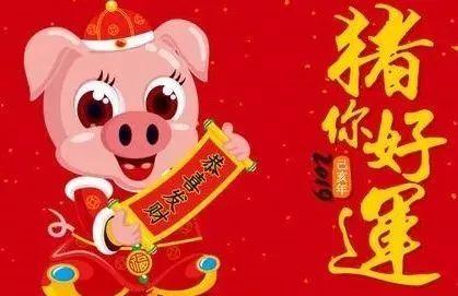 揭秘!你的生日预言了你2019年的猪年运势!