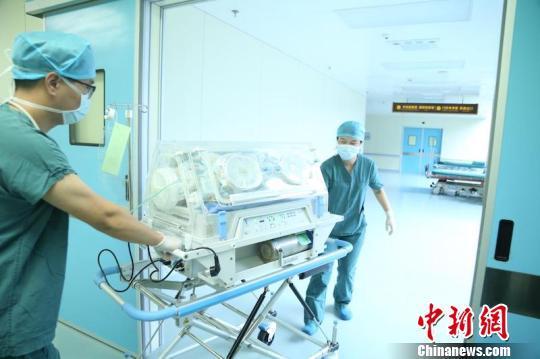 孕妇因车祸成植物人状态 奇迹产下健康女婴
