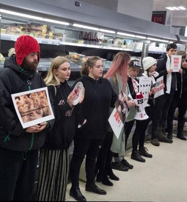 英激进动物保护组织占领超市 呼吁圣诞节拒食肉制品