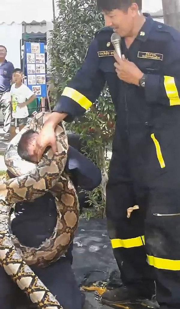 泰消防员亲身示范被巨蟒缠绕如何摆脱 画面惊悚