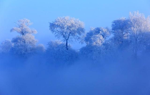 吉林雾凇岛简直太美了!