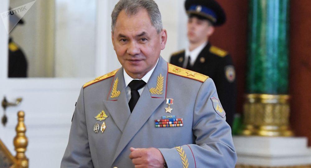 俄防长:中印等国是俄在军事领域优先合作对象