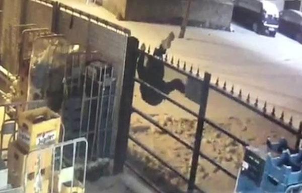 比利时一笨贼偷盗后翻墙 两次被铁尖勾住倒挂数小时