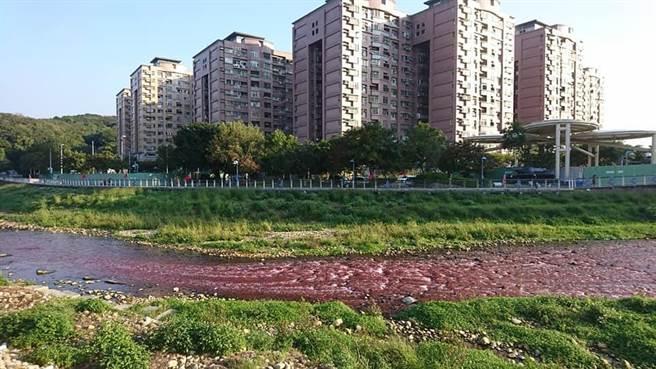桃园出现大面积红褐色溪水 目前正追查污水源头