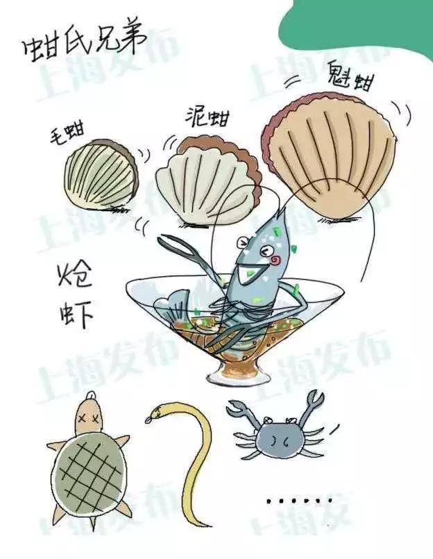 上海市政府通告:禁止生产销售毛蚶、炝虾,季节性禁售醉虾蟹
