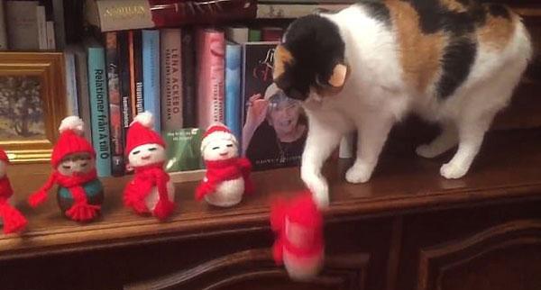 调皮!瑞典猫咪逐个推倒主人书架上圣诞玩偶