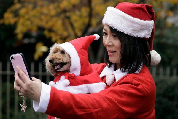 东京2500人参加圣诞老人跑活动 萌犬出镜凑热闹