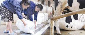 倒牛奶事件后续:探索新模式 能否让学生喝上放心奶?
