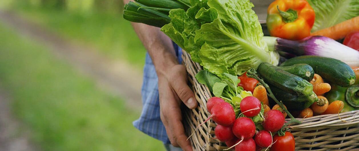 长期食用有机食品有益健康 患癌几率降低两成以上