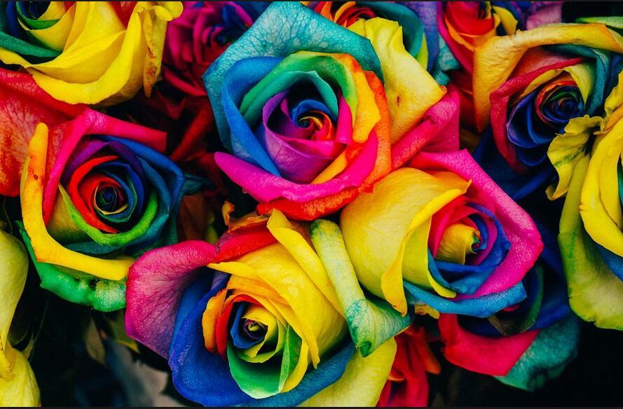 色彩奥秘知多少?法媒带你了解颜色与心理的秘密
