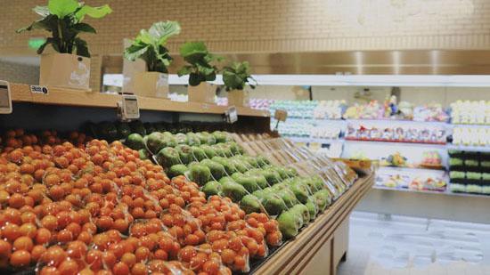 湖北海南商会在汉筹建蔬果批发基地