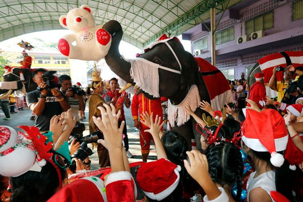 """泰国大象化身""""圣诞使者""""送惊喜 给萌娃抛投小礼物"""