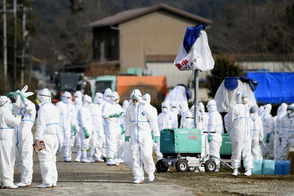 日本岐阜县确认第6例猪瘟感染 开始扑杀7500头猪