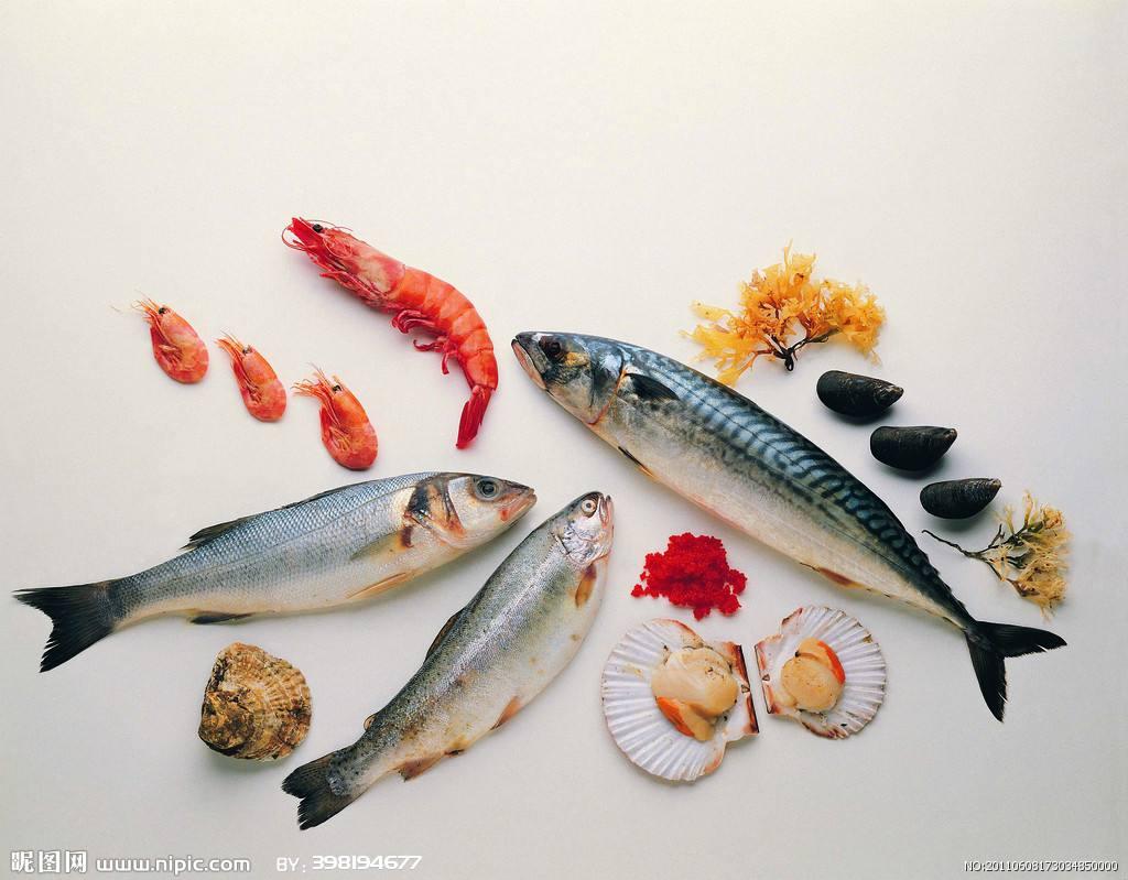 """海鲜这些∴冷冻""""名堂""""你知道吗"""
