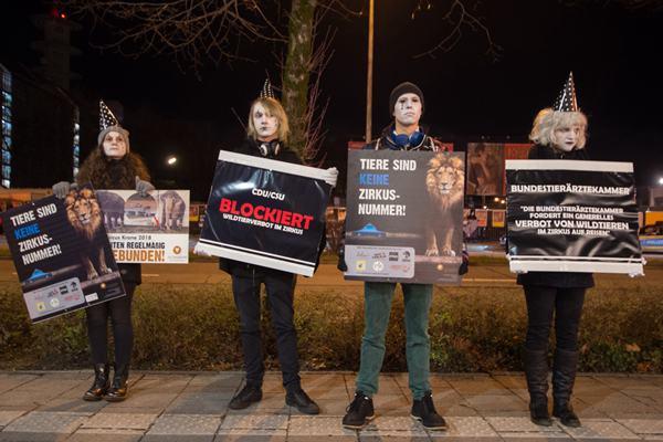 德国:动物权利保护者抗议马戏团虐待动物