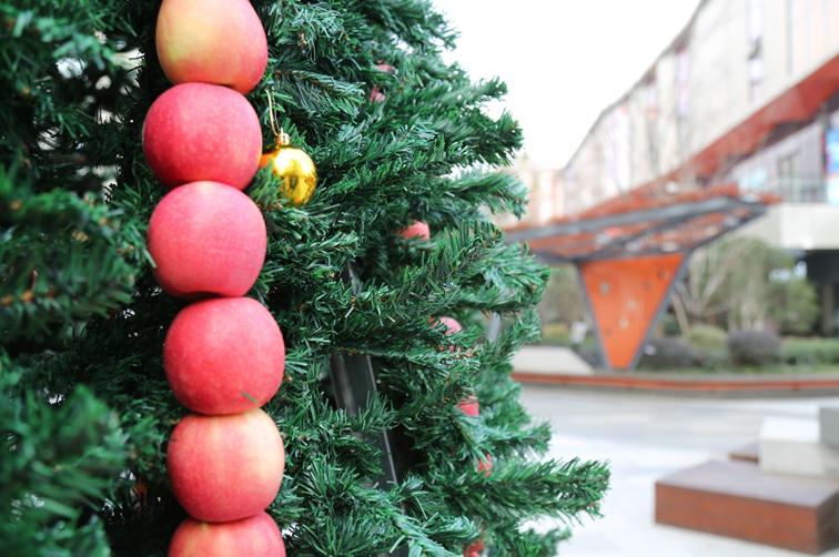 """粉苹果?脆苹果?圣诞苹果消费大数据披露""""口味地图"""""""