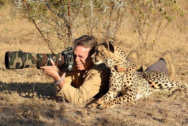 实力抢镜!野生动物与摄影师亲昵互动瞬间