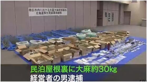 北海道男子私藏30公斤干燥大麻被捕,价值约1亿7千万日元
