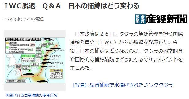 日媒:退出国际捕鲸委员会,日本捕鲸业将何去何从?