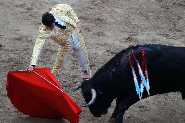 """哥伦比亚举行斗牛活动 斗牛士与牛""""共舞"""""""