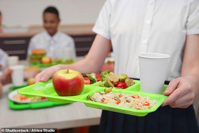 健康校园餐与营养课程有助于降低青少年肥胖率