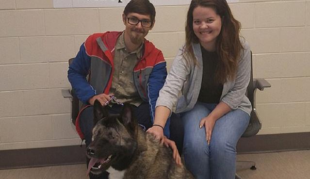 美失明救生犬遭多次遗弃 终被善良夫妇收养
