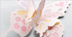教你做漂亮的纸蝴蝶