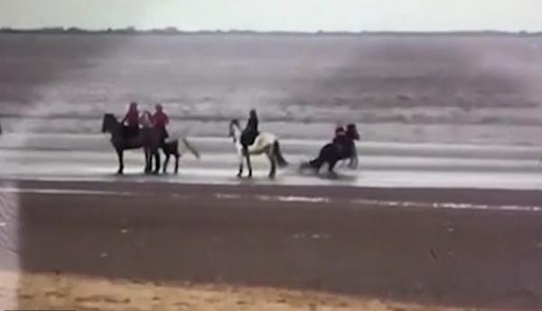 英9岁女孩海边骑马 马失控将其甩落海里