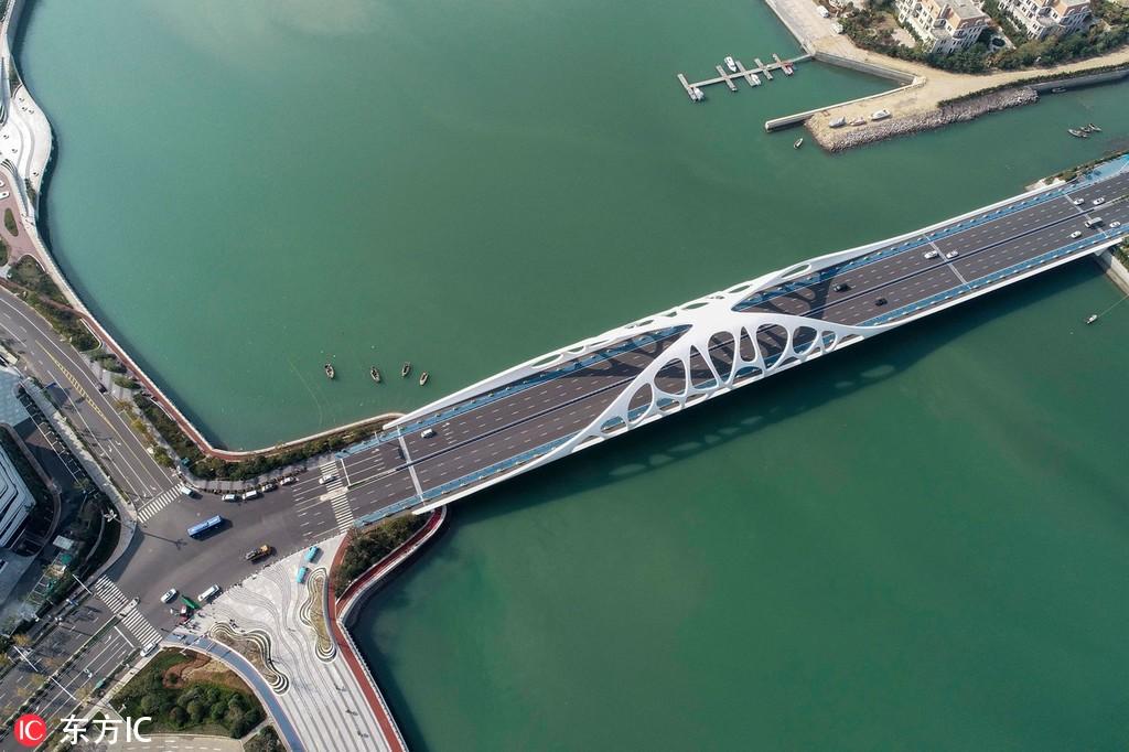青岛新时代地标性建筑:美艳珊瑚贝桥 宛如珊瑚贝撒落海滨