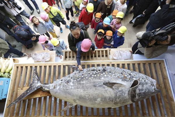 日本神社供奉金枪鱼 民众争相贴香钱祈求财运亨通