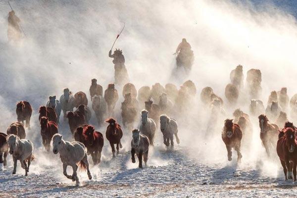 内蒙古赤峰冬季跑马吸引众多游客