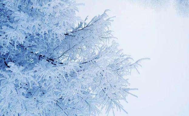 江西下拨3.99亿元救助资金应对雨雪冰冻天气