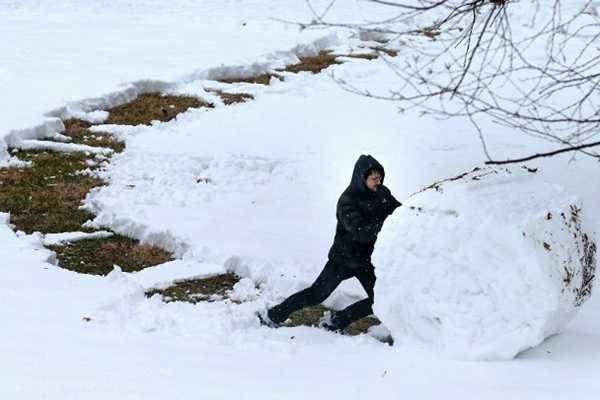 暴风雪横扫美国中西部 已致7人死亡