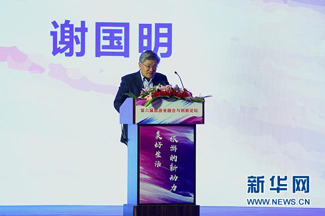 谢国明:文化是旅游的灵魂 创新是旅游的生命