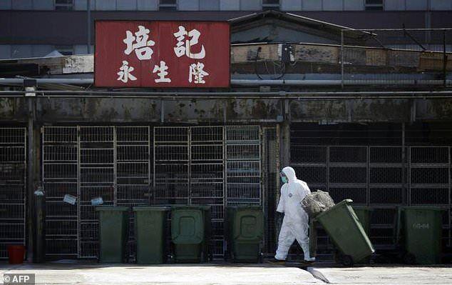 香港大学发现广谱抗病毒化学物质 可对抗SARS、寨卡与禽流感