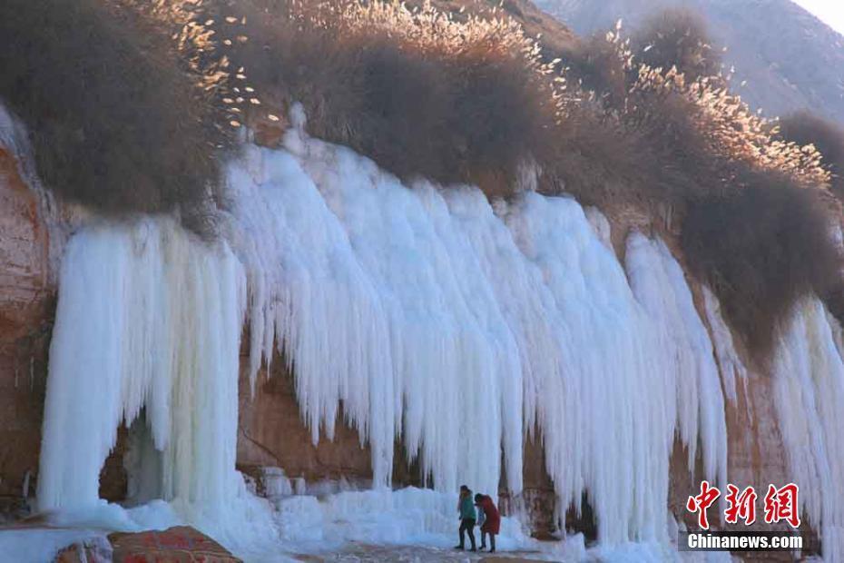 黄河岸边现15米冰瀑悬挂半空