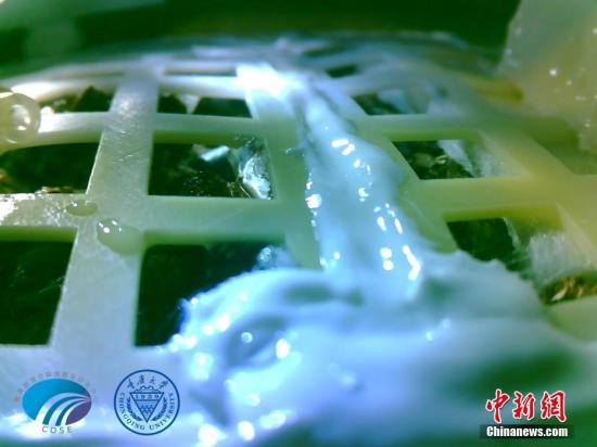 英媒:为建基地铺路 中国在月球上种植物