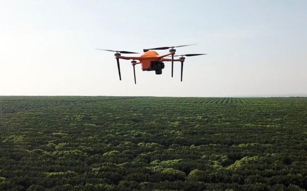 初创公司SeeTree采用人工智能和无人机为农民提供农作物情报服务